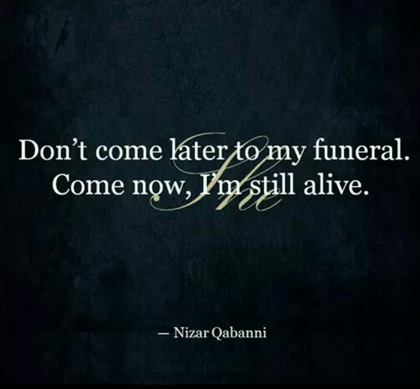 Quotes For Funerals Don't Come Later To My Funeralcome Now I 'm Still Alive.  8Wdee