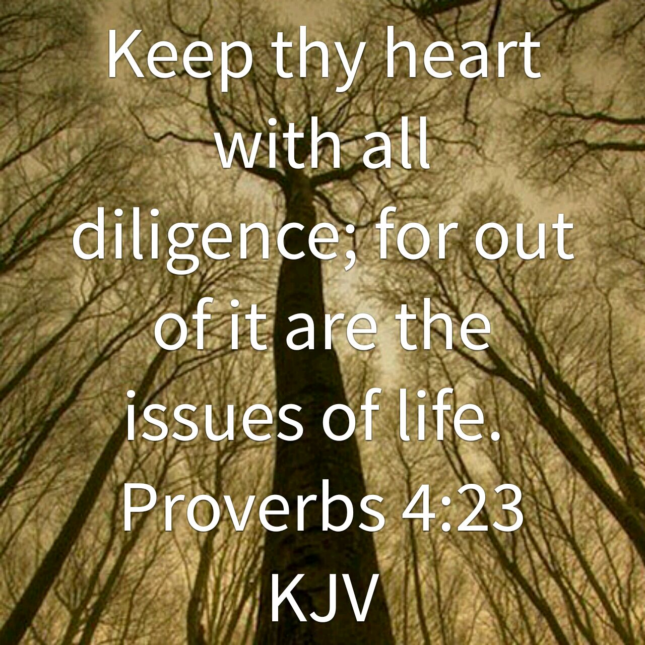 Keep thy heart with all diligence, for out of it are the